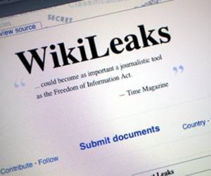 Visa, MasterCard, Wikileaks: Is It A Wash